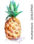 watercolor pineapple on white... | Shutterstock . vector #264619964