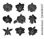 orchid flowers . vector... | Shutterstock .eps vector #264638147
