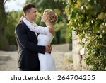 bride and groom | Shutterstock . vector #264704255
