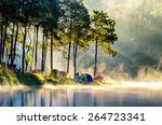 Morning In Forest With Camping...