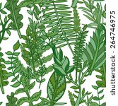 herbal pattern. hand drawn... | Shutterstock .eps vector #264746975