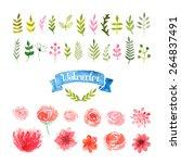 watercolor flowers  laurels and ... | Shutterstock .eps vector #264837491