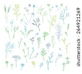 vector set of grass and floral... | Shutterstock .eps vector #264921269