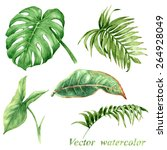 set of watercolor tropical... | Shutterstock .eps vector #264928049