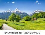idyllic summer landscape in the ... | Shutterstock . vector #264989477