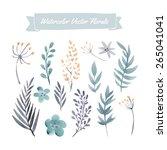 set of handpainted watercolor... | Shutterstock .eps vector #265041041