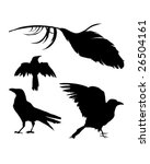 Vector silhouette set of a crow, raven, bird, and feather. - stock vector