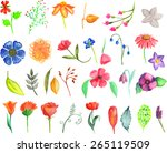 floral elements. big vector set ... | Shutterstock .eps vector #265119509
