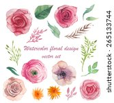 watercolor herbs  ranunculus ... | Shutterstock .eps vector #265133744