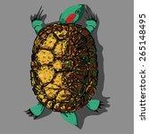 tortoise | Shutterstock . vector #265148495