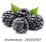 Blackberries With Leaves...