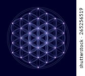bright flower of life with... | Shutterstock . vector #265256519