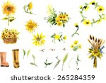 Composition Of Yellow Sunflowe...