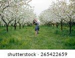 spring walk girl in a beautiful ... | Shutterstock . vector #265422659