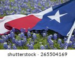 low angle view of a texas flags ... | Shutterstock . vector #265504169