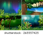 four scenes of forest at night...