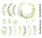Set of flowers painted in watercolor on white paper. Sketch of flowers and herbs. Wreath, garland of flowers