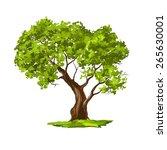 tree vector illustration  hand... | Shutterstock .eps vector #265630001
