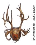 hunting trophy. antlers of a... | Shutterstock . vector #265718204