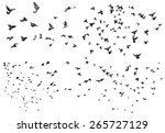 silhouettes of flying birds... | Shutterstock . vector #265727129