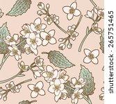 jasmine flowers vintage... | Shutterstock .eps vector #265751465
