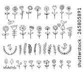 Doodle flower set. Vector illustration.