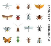 Insect Icon Flat Set With...