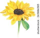 A Watercolour Sunflower ...