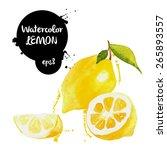 yellow lemon watercolor vector... | Shutterstock .eps vector #265893557
