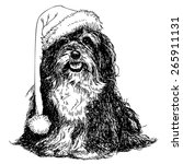 shih tzu with santa claus hat... | Shutterstock .eps vector #265911131