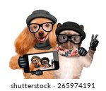 Stock photo dog with cat taking a selfie together with a smartphone 265974191