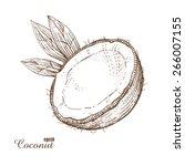 coconut. woodcut style. vector... | Shutterstock .eps vector #266007155