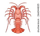 decorative isolated crayfish on ... | Shutterstock .eps vector #266044835