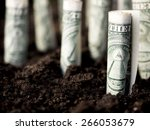growth concept  growing dollar... | Shutterstock . vector #266053679