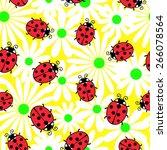 Ladybug And Flowers...