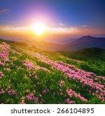 summer landscape | Shutterstock . vector #266104895