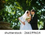 young beautiful wedding couple... | Shutterstock . vector #266199614