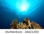 ocean sun and fish   Shutterstock . vector #26621203