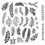 a collection of hand drawn... | Shutterstock .eps vector #266255537