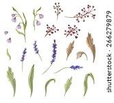 watercolor floral elements set. ...   Shutterstock . vector #266279879