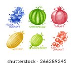 fruits and berries set  ... | Shutterstock . vector #266289245