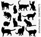 Stock vector set of cats silhouettes on a white background 266348171