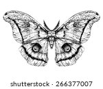 detailed realistic sketch of a... | Shutterstock .eps vector #266377007