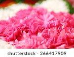 Closeup Pink Flower