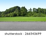 Roadside View  And Green Grass...