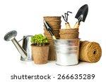 garden tools with seedlings... | Shutterstock . vector #266635289
