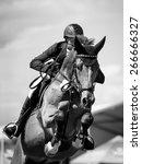 equestrian | Shutterstock . vector #266666327