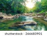 forest river | Shutterstock . vector #266683901