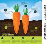 carrot   infographics.... | Shutterstock .eps vector #266689355