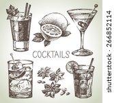 hand drawn sketch set of... | Shutterstock .eps vector #266852114